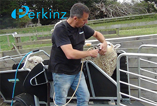 Perkinz Farming Solutions